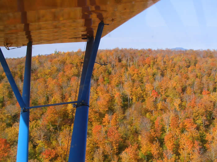 Maine's gorgeous fall foliage is best viewed from the air